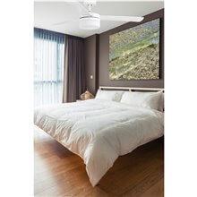 Ventilateur blanc avec lumière PANAY de Faro